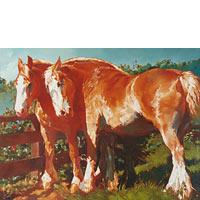 Belgian Horses - Limited Edition Giclée Canvas Prints