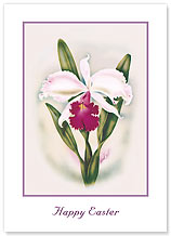 Cattleya Orchid - Hawaiian Collectors Edition Greeting Cards - Easter Cards