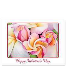 Plumeria Morning - Hawaiian Collectors Edition Greeting Cards - Valentine's Day Card