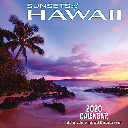 "<strong>11"" x 11""</strong> - 2020 Wall Calendar"