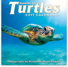 Hawaiian Sea Turtles - 2017 Deluxe Hawaiian Wall Calendar