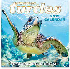 Hawaiian Sea Turtles - 2019 Deluxe Hawaiian Wall Calendar