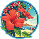 Hibiscus - Hawaii Decal