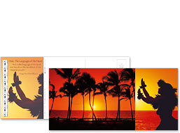 Hula Sunset - Hawaiian Foldable Postcards