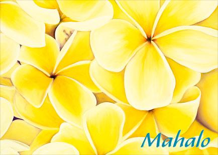 Sunshine Plumeria - Personalized Greeting Card