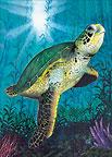 Turtle - Hawaiian Everyday Blank Greeting Card