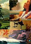 Collage - Hawaiian Happy Birthday Greeting Card