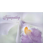 Beauty in a Whisper - Personalized Greeting Card