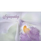 Beauty in a Whisper - Hawaiian Sympathy Greeting Card