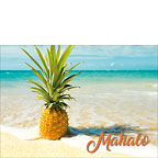 Pineapple Beach - Personalized Greeting Card