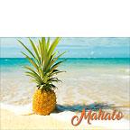 Pineapple Beach - Hawaiian Mahalo / Thank You Greeting Card