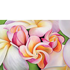 Plumeria Morning - Personalized Greeting Card