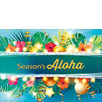 Season's Flowers - Personalized Holiday Greeting Card