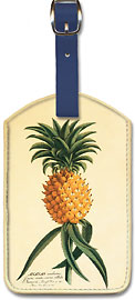 Ho'okipa, Hawaiian Pineapple - Hawaiian Leatherette Luggage Tags