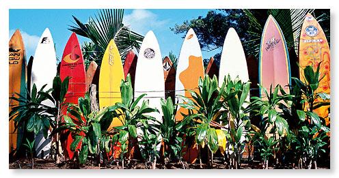 Hawaiian Panoramic Magnet Old Surfboards Never Die Bernard