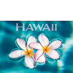 The Islands of Hawaii - Hawaii Magnet