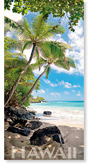 Hamoa Beach - Hawaii Panoramic Magnet