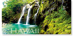 Emerald Falls - Hawaii Panoramic Magnet