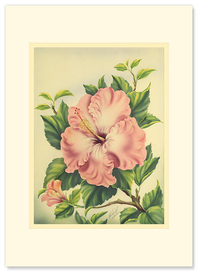 Pink Hibiscus - Personalized Vintage Collectible Greeting Card