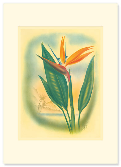 Hawaiian Bird of Paradise - Personalized Vintage Collectible Greeting Card