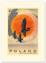 Poland: Where You Can Really Relax - Premium Vintage Collectible Blank Greeting Card