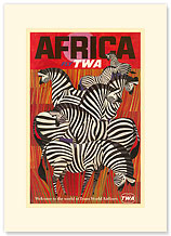 Fly TWA Africa - Zebras - Premium Vintage Collectible Blank Greeting Card