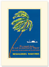Messageries Maritimes - Palm & Ship - Premium Vintage Collectible Blank Greeting Card