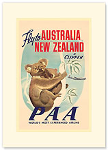 Fly to Australia and New Zealand - Koala - Premium Vintage Collectible Blank Greeting Card
