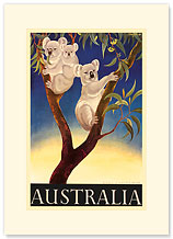 Australia Koala - Premium Vintage Collectible Blank Greeting Card