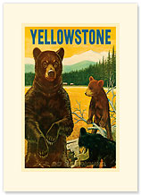 Yellowstone Go Greyhound - Bears at the Park - Premium Vintage Collectible Blank Greeting Card