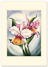 Pink Orchid - Personalized Vintage Collectible Greeting Card