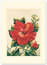 Red Hibiscus - Personalized Vintage Collectible Greeting Card