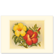 Hawaiian Hibiscus - Hawaiian Premium Vintage Collectible Blank Greeting Card