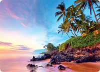 Tropical Shores - Hawaiian Thick Premium Postcard