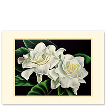 Two Gardenias - Hawaiian Premium Vintage Collectible Greeting Card - Sympathy Card