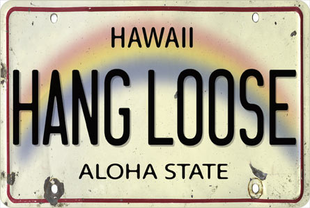 Hawaii License Plate Aesthetic