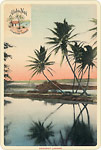 Aloha Nui Postcard - Hawaiian Vintage Postcard