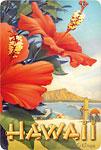Hibiscus Beach Day - Hawaiian Vintage Postcard