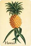 Ho'okipa (Hospitality) - Hawaiian Vintage Postcard