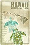 Hawaii Paradise of the Pacific - Turtles (Honu) Hawaiian Islands - Hawaiian Vintage Postcard