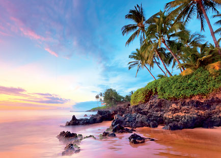 Tropical Shores - Personalized Greeting Card