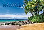 Luscious Palms - Hawaii Magnet