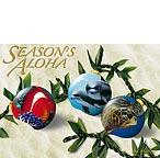 Ocean Ornaments - Hawaiian Holiday / Christmas Greeting Card