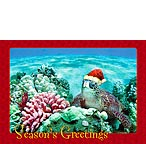 Holiday Honu - Hawaiian Holiday / Christmas Greeting Card