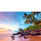 Tropical Shores - Hawaiian Everyday Blank Greeting Card