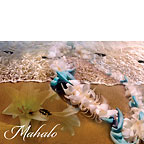 Fragrant Memories - Hawaiian Mahalo / Thank You Greeting Card