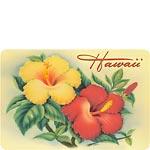 Hawaiian Hibiscus - Hawaiian Vintage Postcard